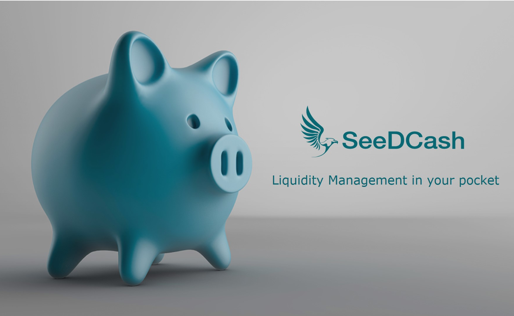 SeeDCash